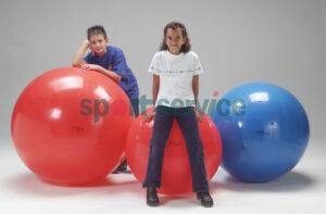 Gymnic Physio 85cm